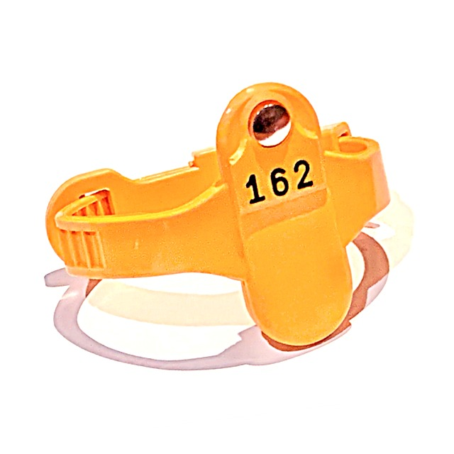 wrist straps plastic rubber leisure swimming pool lockers